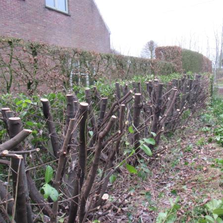 Verwijderen van hagen